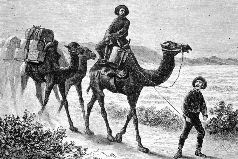 Camels Carrying Soldiers